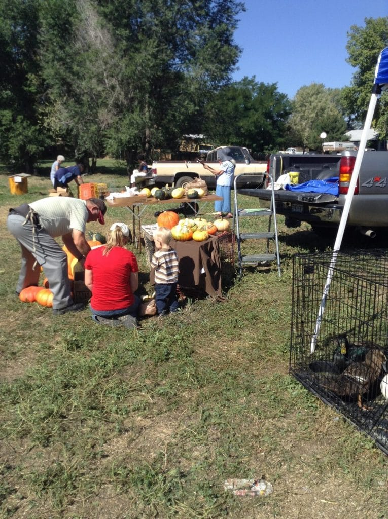 Urban Farmer's Market & Chicken Swap - Wardle Feed & Pet Supply